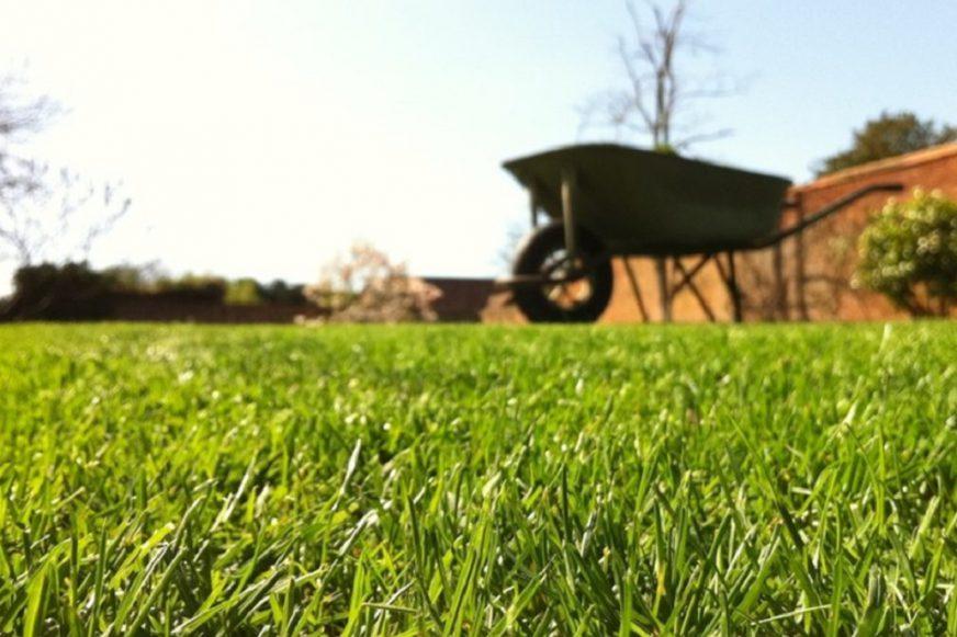 A wheelbarrow in a walled garden