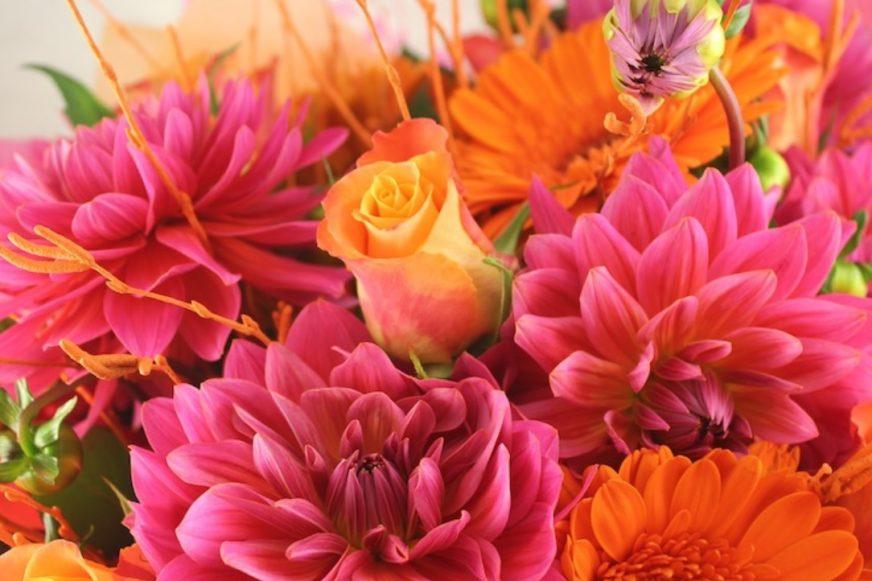 Various blooms