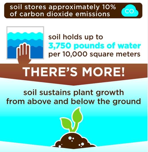 Soil stores website screenshot