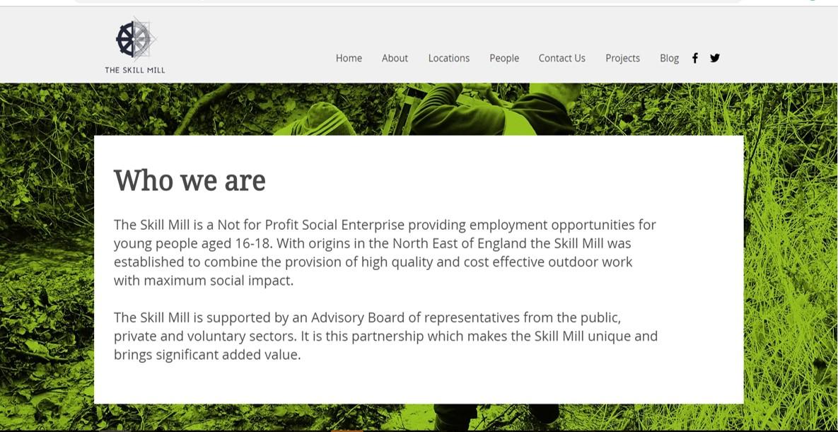 The Skill Mill website