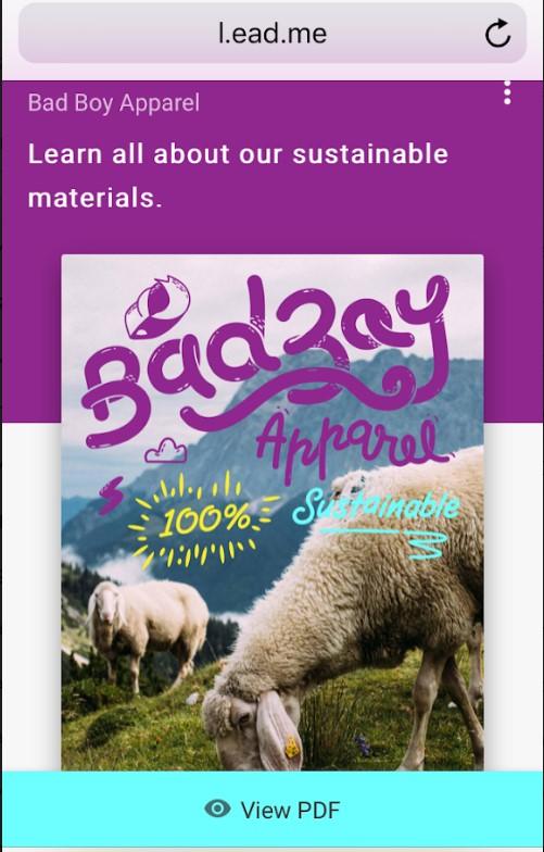 Bad Bay Apparel