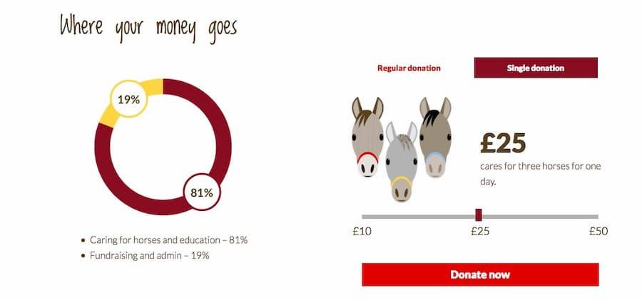 Redwings website donate screenshot