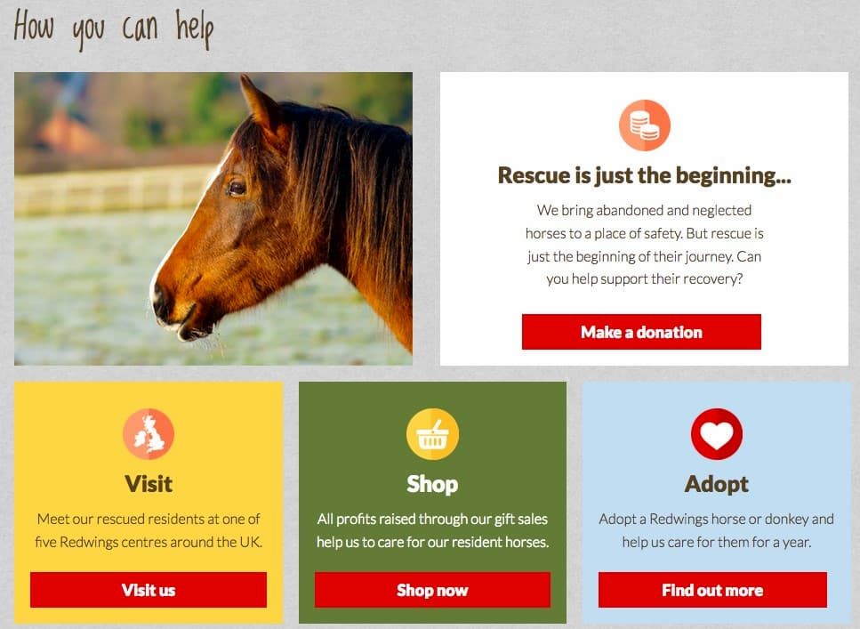 Redwings website screenshot